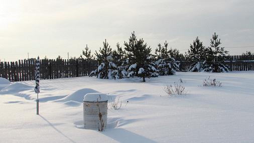 Зима: время готовиться к дачному сезону