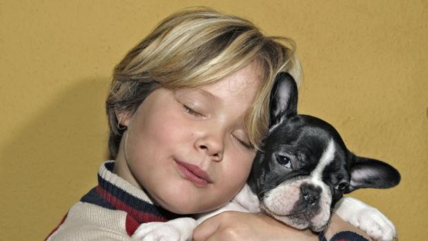 Болезни, передающиеся от собак человеку