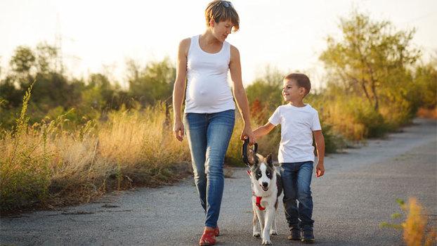 Как решить проблему запоров при беременности