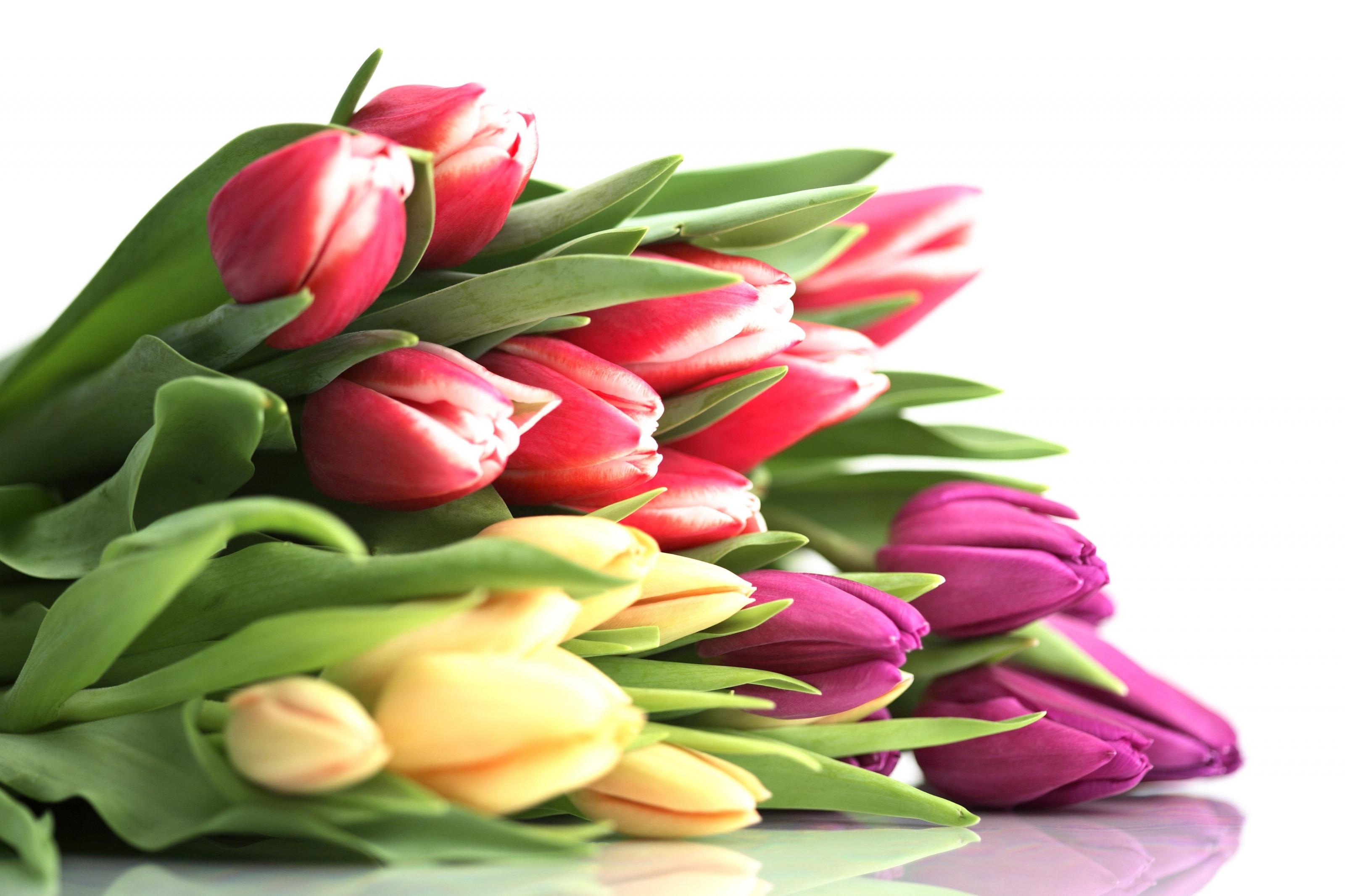 Подарки женщинам на 8 Марта в соответствии со знаком Зодиака